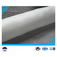 Wholesale PET/PP  White Multifilament Woven Geotextile 180kN from china suppliers