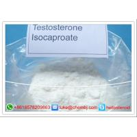 Wholesale Legal Powder Testosterone Steroids , Testosterone Isocaproate CAS 15262-86-9 from china suppliers