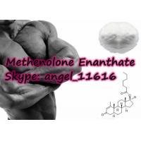 Wholesale Primobolan Depot Steroids Methenolone Enanthate Bobybuilding White Powder from china suppliers