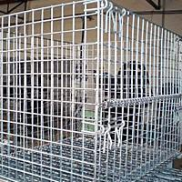 Wholesale Wire Mesh Containers from china suppliers