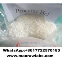 Quality Topical Pain Reliever Intermediates Local Anesthetic Powder Procaine HCL Procaine hydrochloride for sale