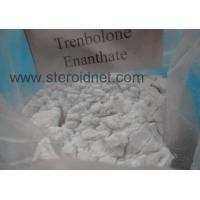 Wholesale Trenbolone Enanthate Fat Loss Steroids Bulking Agent Tremendous Strength from china suppliers
