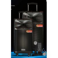 Wholesale Wireless Uhf Microphone Rechargeable PA Speaker System With Trolley And Wheels from china suppliers