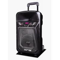 Quality Lithium Battery Rechargeable Trolley Speaker With Wireless Microphone / Bluetooth for sale