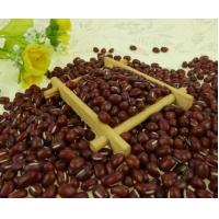 Wholesale 2018 Crop small red beans different types of pulses from china suppliers
