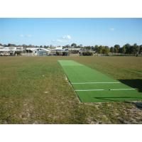 Wholesale 2m × 50m size 10mm height standard cricket teeing ground synthetic grass from china suppliers