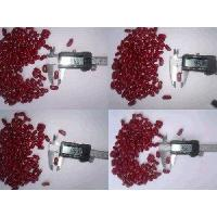 Wholesale British red kidney bean from china suppliers