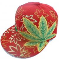 Wholesale Cap / Sport Cap / Baseball Cap / Snapback Cap with Joined Applique 25 from china suppliers