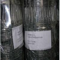 Wholesale Hot-galvanized / Electro-galvanized Farm Field Fence / Farm Fence Used For Horse from china suppliers