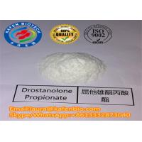 Wholesale 521-12-0 Masteron Legal Raw Steroid Powder Drostanolone Propionate / Masteron from china suppliers