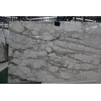Wholesale High Quality Natural Stone--Chinese Cotton White Marble Wall Tile and Flooring Tile,White Marble from china suppliers