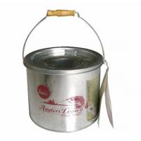 Quality Minnow Bucket, Galvanized Iron Bucket (SUN-027) for sale