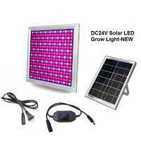 Wholesale DC24V Solar LED Grow Light 58W Dimming Red+Blue Full spectrum for Vegetable and Flower from china suppliers