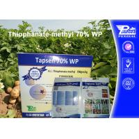 Wholesale Off - White Powder Systemic Fungicides Thiophanate - Methyl 70% WP from china suppliers