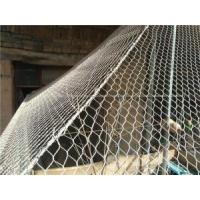 Wholesale Specializing In Stainless Steel Aviary Netting from china suppliers