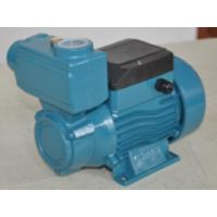 Wholesale Domestic Electric Motor Vortex Impeller Pump 0.75HP / 0.55KW  TPS -70 from china suppliers