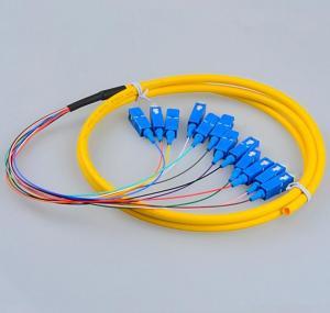 Wholesale Telecom Standard SC Pigtails SC/UPC SM  Fiber Patch Cords 9/125 12Cores  Fiber Pigtails 12 Core Patch Cables from china suppliers