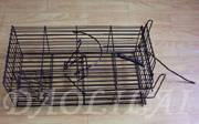 Buy cheap Bait Rat Cage Trap from wholesalers