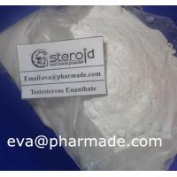 Wholesale Buy Testosterone Enanthate Powder Bodybuilding Hormones For Muscle Growth from china suppliers