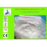 Wholesale 315-37-7 Raw Hormone Powders Testosterone Enanthate Anabolic Steroid Powder from china suppliers