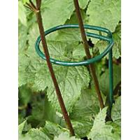 Green PVC coated ring support used for supporting plants