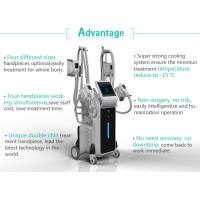 Wholesale ODM OEM Logo Language Customized 4 handles coolsculpting fat freezing machine cryolipolysis for clinic from china suppliers