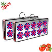 Wholesale 450W Advanced Spectrum Cidly Veg Master LED grow lights Vegetative growth LED grow lights from china suppliers