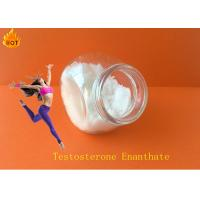 Wholesale Muscle Growth Steroids Nature Chemical Steroid Testosterone Enanthate cas 315-37-7 from china suppliers