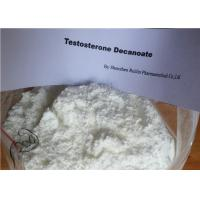 Wholesale Medicine Decanoate Testosterone Steroid Hormone , Raw Testosterone Powder from china suppliers