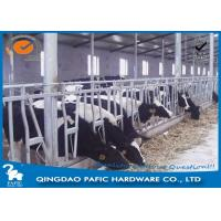 Wholesale Livestock Farm Locking Feed Barriers / Steel Galvanized Cattle Headlock Plan from china suppliers