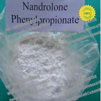 Wholesale 99% Purity Raw Steroid Powders Nandrolone phenylpropionate For Bodybuilding from china suppliers