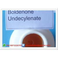 Wholesale Boldenone Steroid Undecylenate Equipoise / Boldenone Esters Powder CAS 13103-34-9 from china suppliers