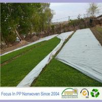Wholesale Spunbond polypropylene ground weed suppressant from china suppliers