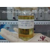 Cutting Cycle Steroids EQ Boldenone Undecylenate Injection Fat Cutting Steroids 13103-34-9
