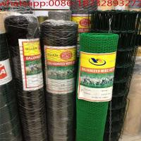 Wholesale 6ft chicken wire/rabbit wire mesh/chicken wire for sale/poultry net/chicken wire price/chicken mesh fencing /wire nettin from china suppliers