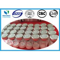 Wholesale IGF-1 LR3 Insulin-Like Growth Factor Human Growth Hormone 1mg / Vial And 0.1mg / Vial from china suppliers