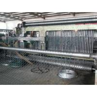 Quality PVC / Galvanized Gabion Machine / Hexagonal Wire Mesh Machine SGS TUV for sale