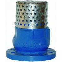 Wholesale Low Pressure 4 Flanged Foot Valve , PN16 Oil Cast Iron Foot Valve from china suppliers