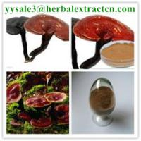 Wholesale reishi mushroom series: Reishi slices, Reishi Mushroom Extract polysaccharide 20% triterpenoids1% , Manufacture from china suppliers