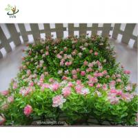 Wholesale UVG babysbreath eucalyptus turf and artificial colorful boxwood mat for garden decoration from china suppliers