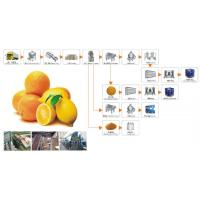 Wholesale Juice Turnkey Line from china suppliers