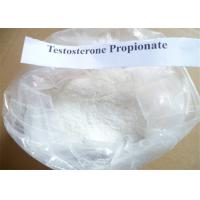 Quality Testosterone Propionate Muscle Building Steroids Puriy 98% CAS No. 57-85-2 for sale