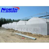 Wholesale agricultural poly film greenhouse for sale in China from china suppliers