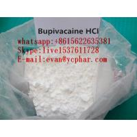 Wholesale No Side Effect Local Anesthetic Powder Bupivacaine Hydrochloride For Pain Relief from china suppliers