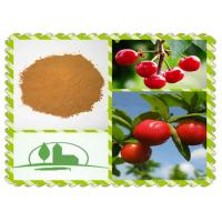 Wholesale Plant Extract  Natural Whitening Factor Vitamin C Acerola  Fruit Extract Acerlary TM CH17 for Skin Care Product from china suppliers