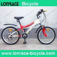 "Wholesale 20"" mountain bike from china suppliers"