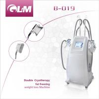 Wholesale Double cryo handles fat freeze Cryolipolysis Slimming Machine Stationary Style from china suppliers