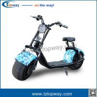 Wholesale New customized 1000W citycoco 18*9.5 big two wheels electric scooter harley from china suppliers