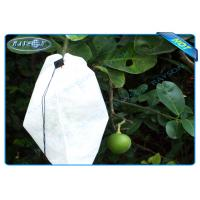 Wholesale Nonwoven Agiculture Plant Grow Bags For Fruit Growth and Protection , Potato Grow Bags from china suppliers