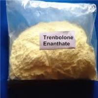 Wholesale Male Muscle Promote Tren Anabolic Steroid Hormone Trenbolone Enanthate 10161-33-8 from china suppliers